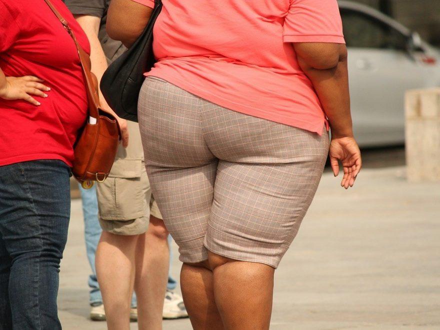 Nyt om forskning i fedme og overvægt